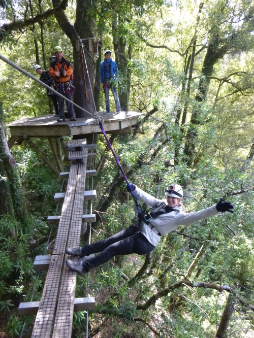 Canopy Tour 5